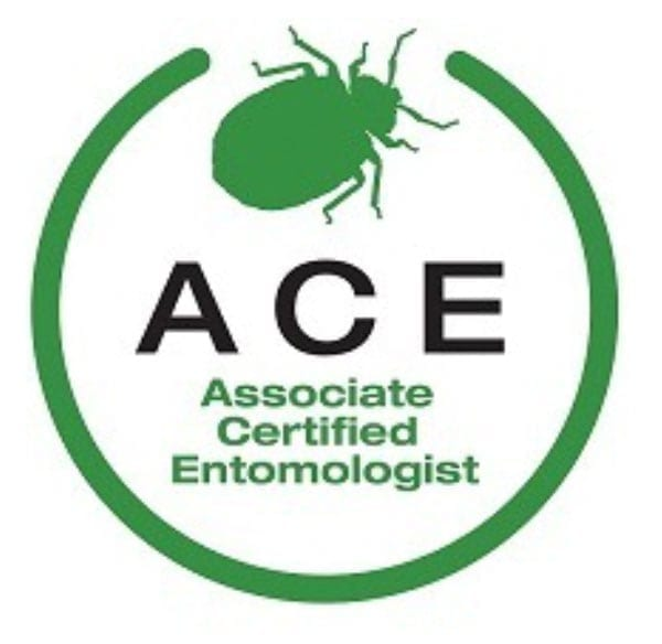 Ace Certified Professional in NJ
