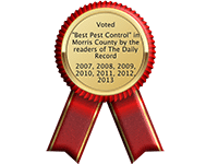 """Voted """"Best New Jersey Pest Control"""" by The Daily Record"""