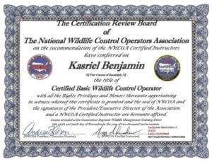 Kasriel Benjamin – Certified Basic Wildlife Control Operator