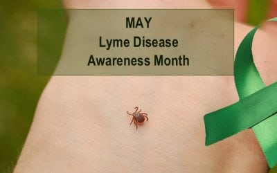 How Can I Help? Lyme Disease Awareness Month