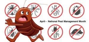 Prevent Pest Infestations, April National Pest Management Month