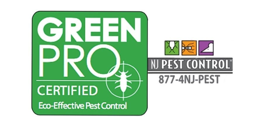 GreenPro Certified Pest Control