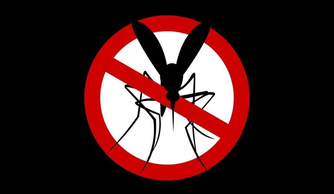 Mosquito & Tick Control | Morris County, NJ