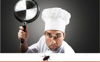 How Do Restaurants Control Pests?