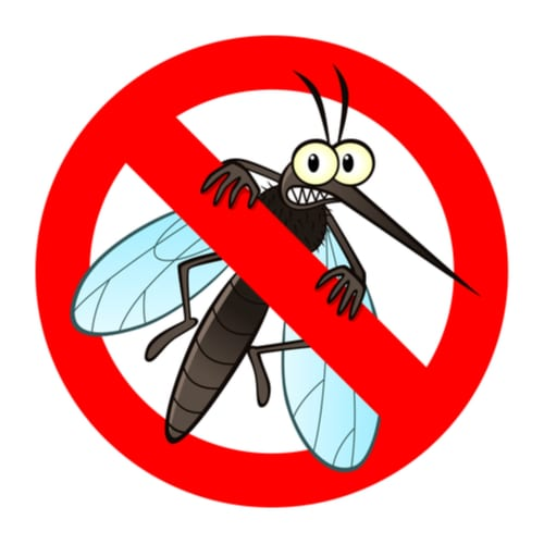 Bergen County NJ Pest Control and Wildlife Removal Near Me 2